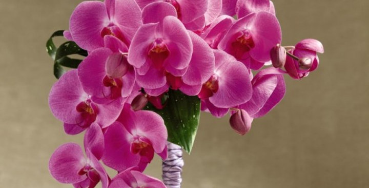 The FTD® Glorious™ Bouquet