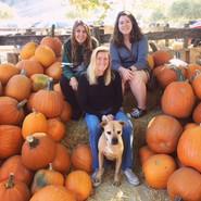 Frieda goes pumpkin picking!