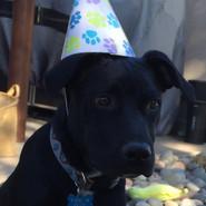 Party boy!