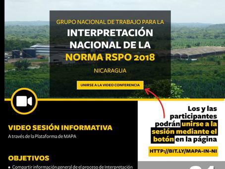Nicaragua: Primera reunión para la Interpretación Nacional de la norma RSPO 2018