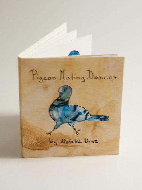 Pigeon Mating Dance: an illustrated guide