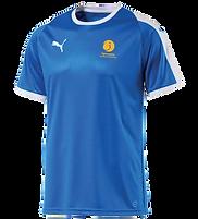 PUMA Liga Jersey F.png