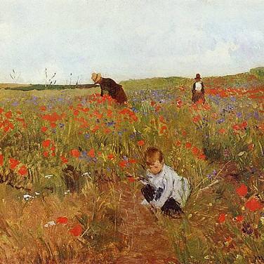 Picking Flowers in a Field
