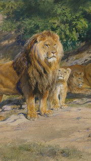 23. Similar to Lions at Home by Rosa Bonheur (The King Watches by Rosa Bonheur)