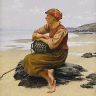 Oyster Picker Sitting on the Beach