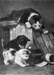 20. A Fascinating Tale by Mme. Henriette Ronner