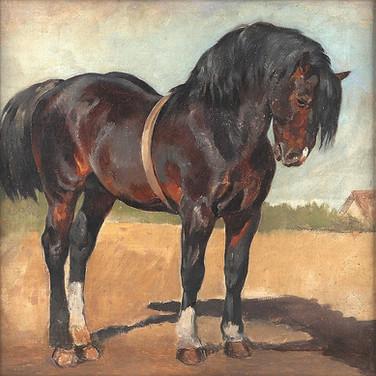 Ein Braunes Pferd