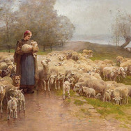 Shepherdess and Her Herd