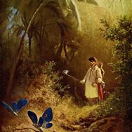 Der Schmetterlingsjafer