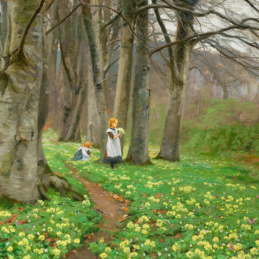 Two Girls Picking Flowers in a Forest