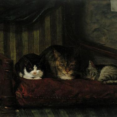 Kissa Poikasineen