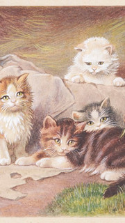 1. Similar to Four Little Scamps Are We by Julius Adam (Playing Kittens by Julius Adam)