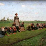 Flaxweeding in Flanders
