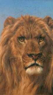 22. Similar to An Old Monarch by Rosa Bonheur (Portrait of a Lion by Rosa Bonheur)