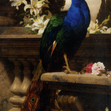 A Peacock in a Classical Landscape