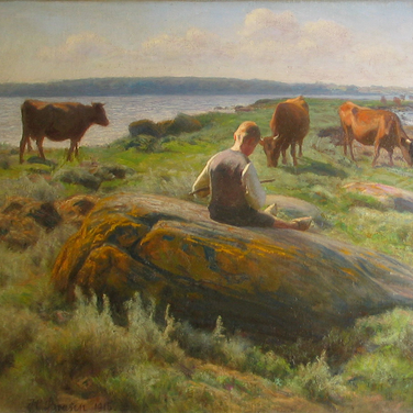 Boy with Cows on a Meadow