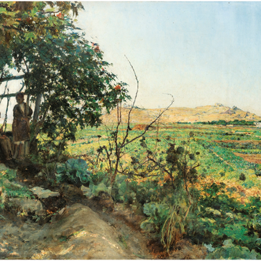 Landscape of the Suburbs of Tunis