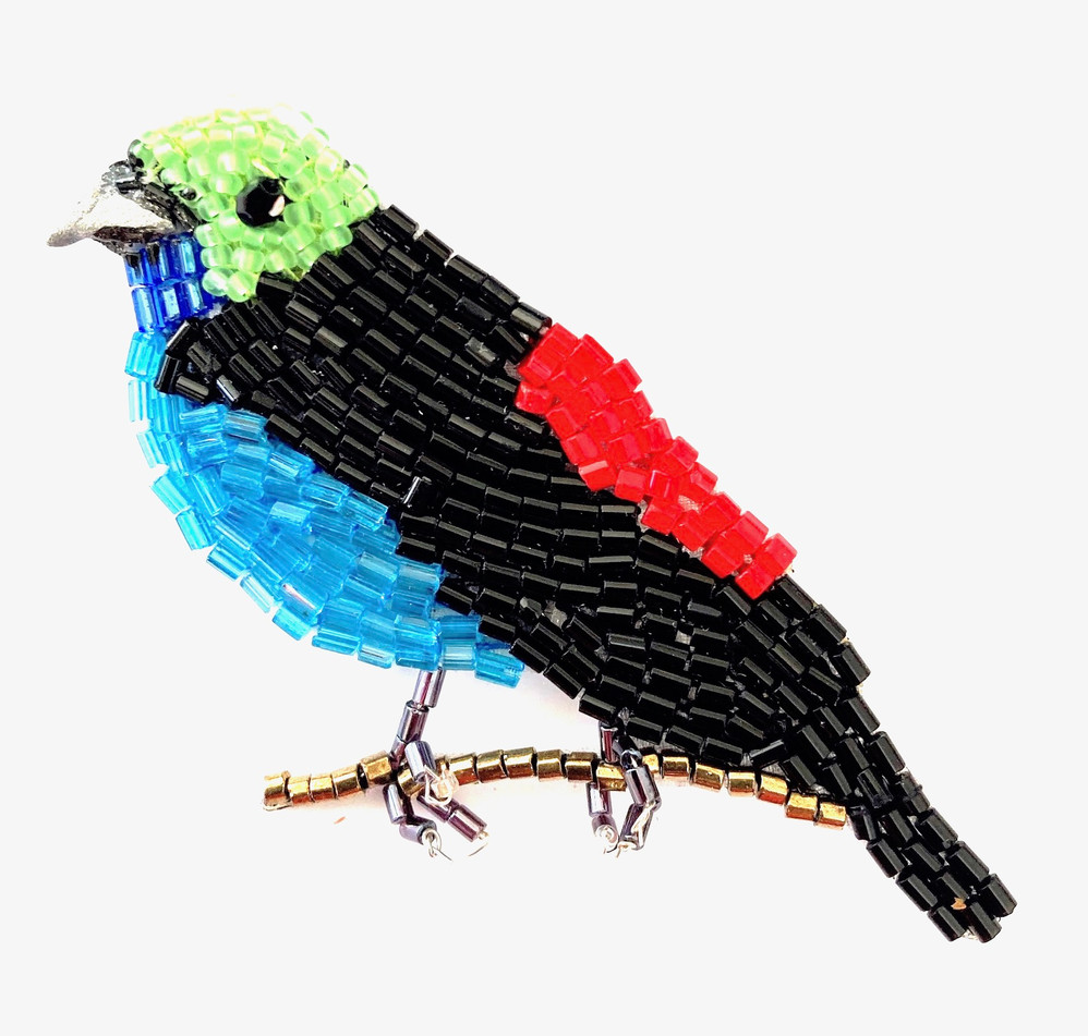 N°758.PARADISE TANAGER.