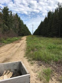 Hydro Line near property