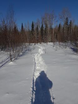 Excellent Trails