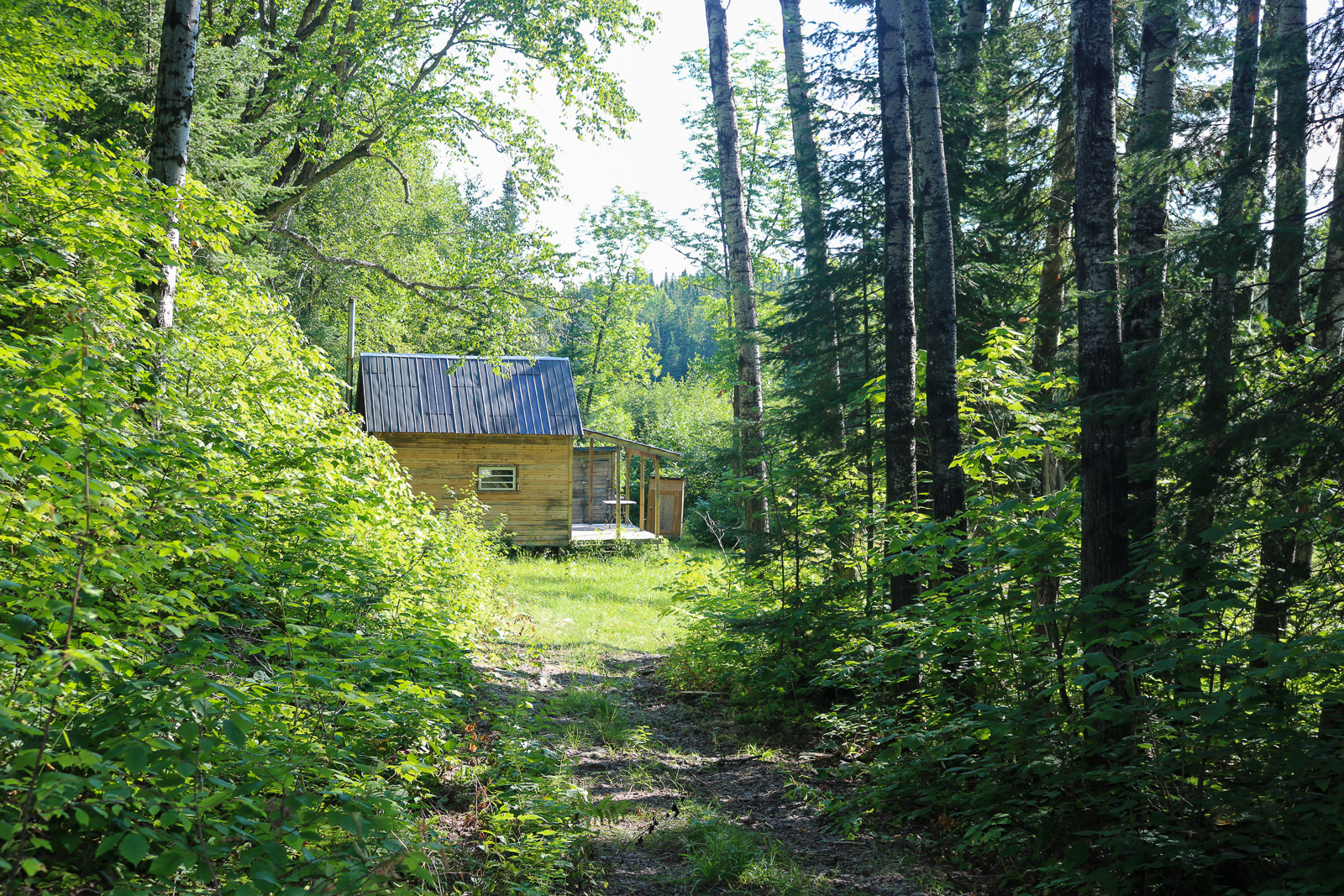 Trail into Cabin