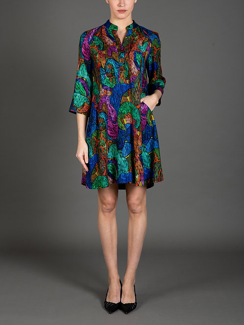 Artist's Paisley Print Dress