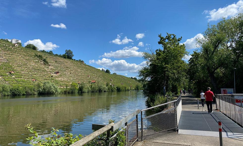 """Tagesradtour """"Neckartal"""" 12.08.20 von Stuttgart nach Besigheim"""