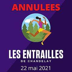 entraillesdeChandelay2021.png