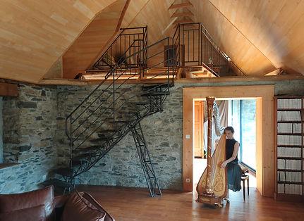 Harpe Galey.jpg