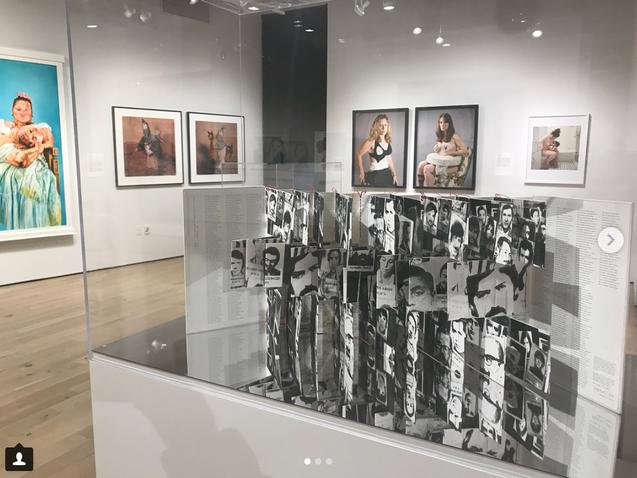 """Mirror Mirror"", Paul Robenson Galleries, Rutgers University, NJ, 2018"