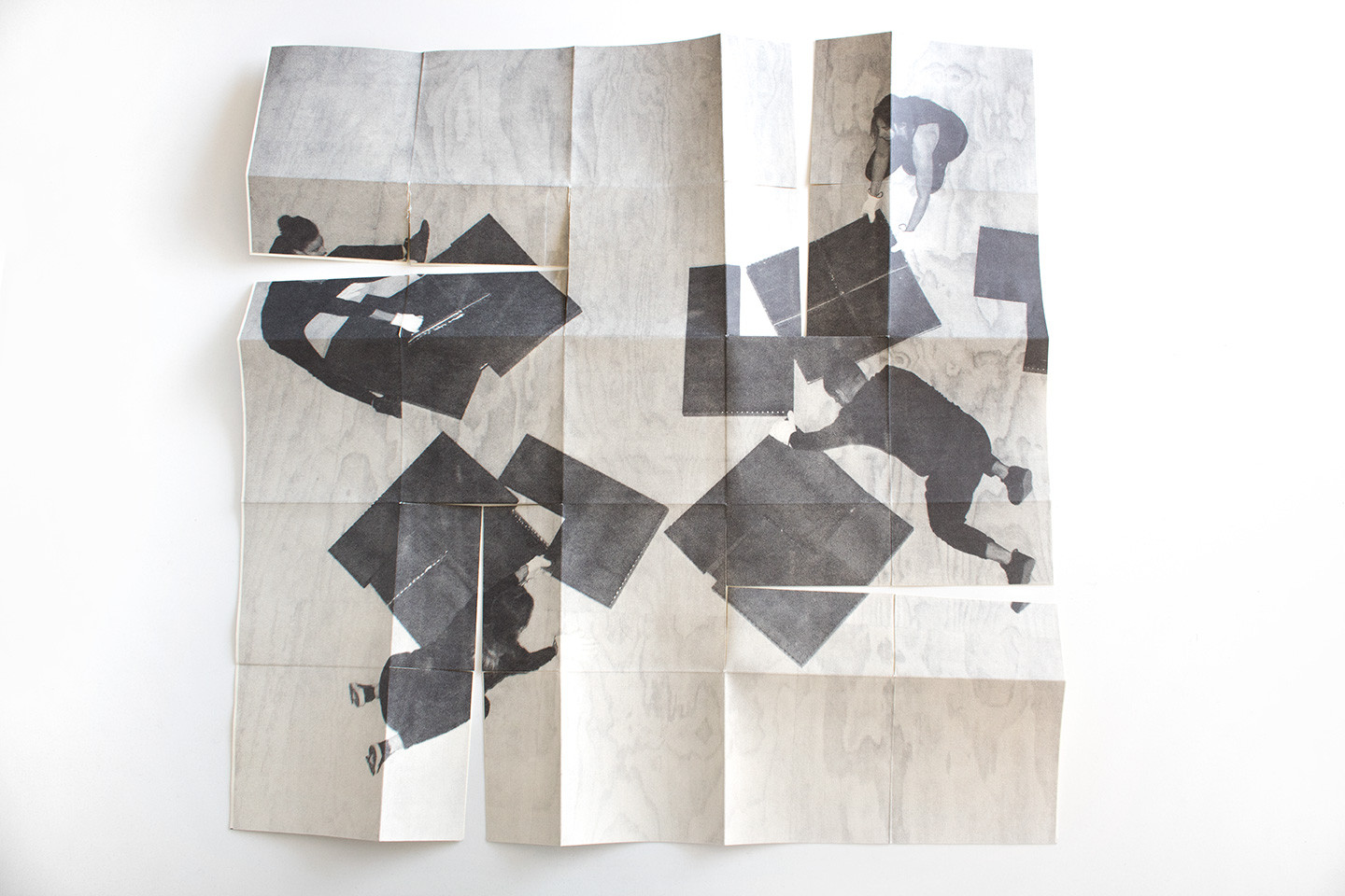 Dignidad,photolithography, artist book, variable measures, 2019.jpg