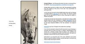 "Kindle eBook ""Rhino Images, art and rhinoceros"""