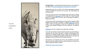 "Kindle eBook ""Rhino Images, art and rhinoceros"""