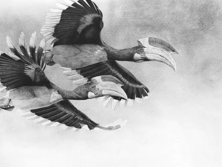 Birds in Art 2018