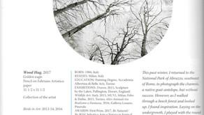 Il catalogo di Birds in Art 2017 è arrivato!