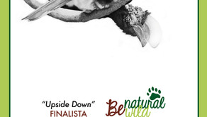 """Upside Down"" Finalista a BeNatural BeWild"
