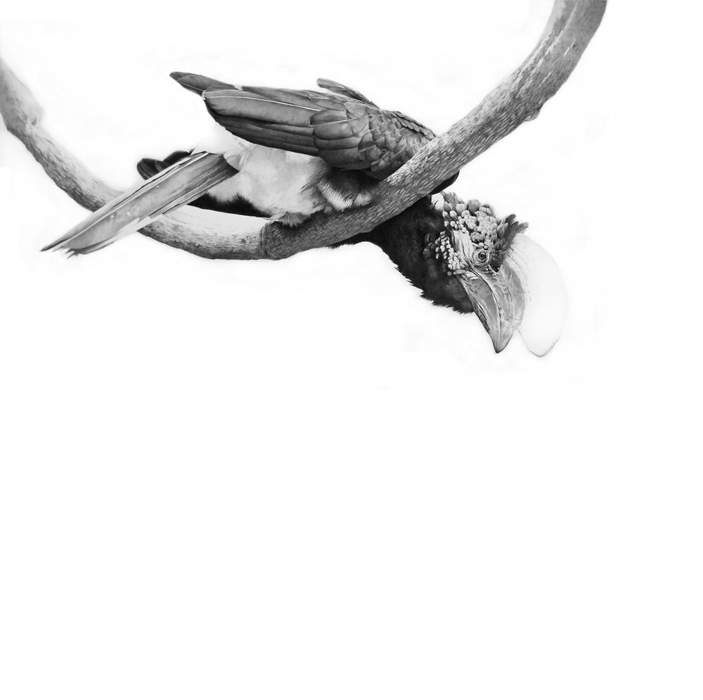 """Upside Down"", matita su carta, 100x100 cm, 2016"