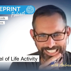 The Wheel of Life Activity