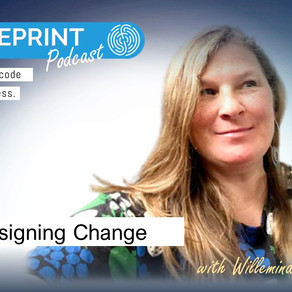 Designing Change with Willemina Wahlin