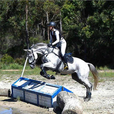 Maya and Monte XC training at Wallaby Hill