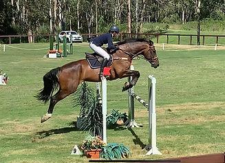 Ludicrous Jumping 1.10