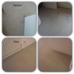 Before & After pictures carpet clean