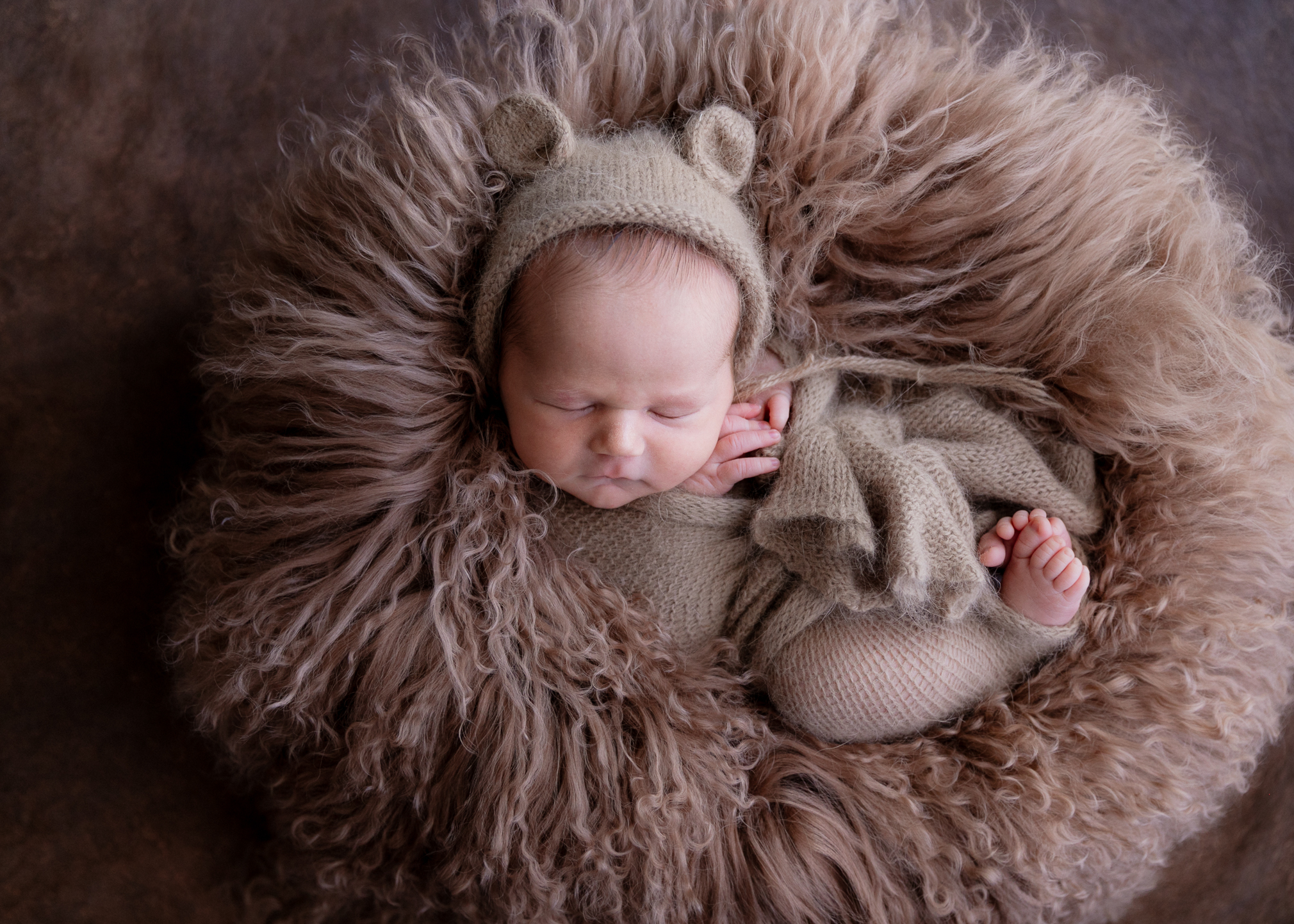 Newborn Elena Loeffler Photography