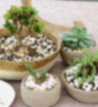 vasos de cerâmica produzidos em Gonçalves MG