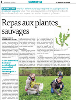 reportage plantes sauvage