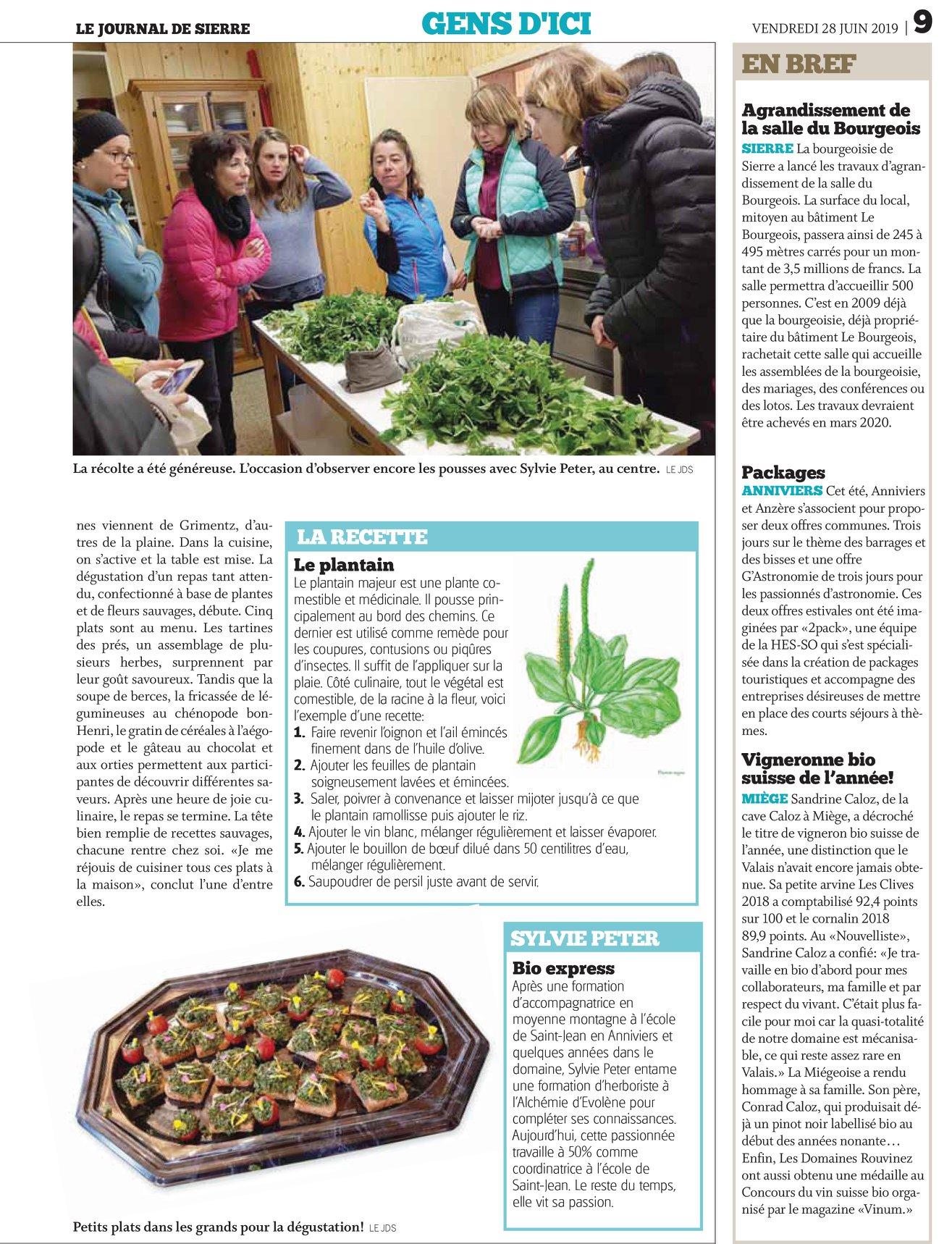 reportage plantes sauvage2