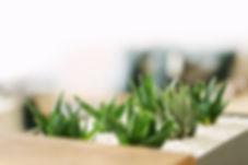 HIO Homeopathy - Testimonial