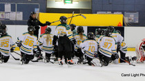 Guide to Junior Ice Hockey