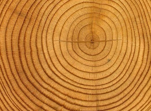 lemn pentru alimentare generator aer cald