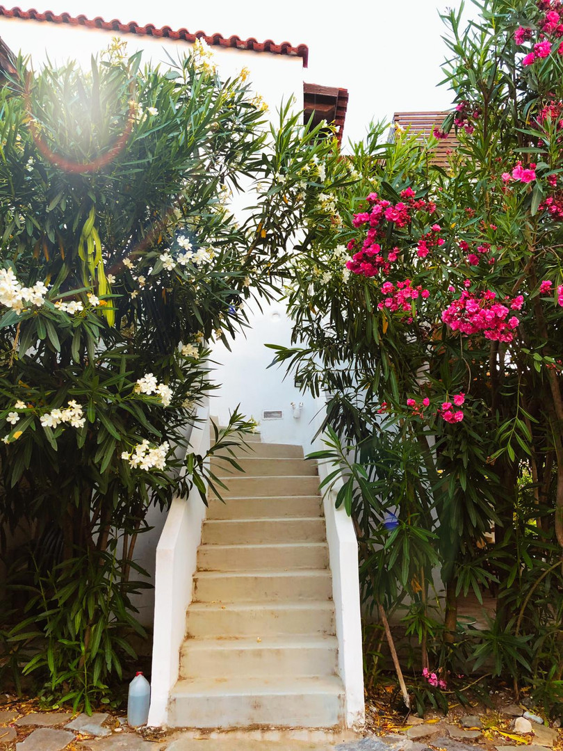 Staircase to main house